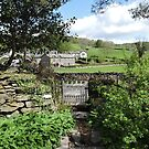 Miss Potter's View of Sawrey by CreativeEm