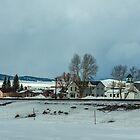 Christmas in Avon (Montana, USA) by Bryan D. Spellman