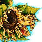 Sunflower Watercolor by fatbirddesigns