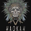 Haokah Native American Heyoka Empath Sacred Clown Empathy by thespottydogg