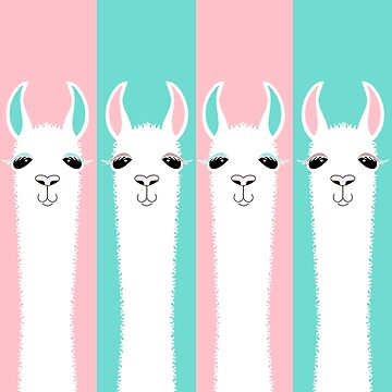 FOUR LLAMA ON PINK AND BLUE by jgevans