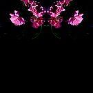 Rose Mai Belle Noir 2492 Pattern Version 1  by Candy Paull