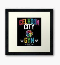 Celadon City Gym Framed Print