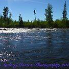 Wonderful Fly Fishing Rivers . Giman . Sweden.. ©Dr.Andrzej Goszcz. June 2018. by © Andrzej Goszcz,M.D. Ph.D
