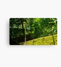 Metal in the park Canvas Print