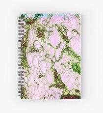 Red Rock Rain Spiral Notebook