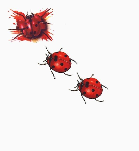 Lady Bug Splat by Wizard-Designs