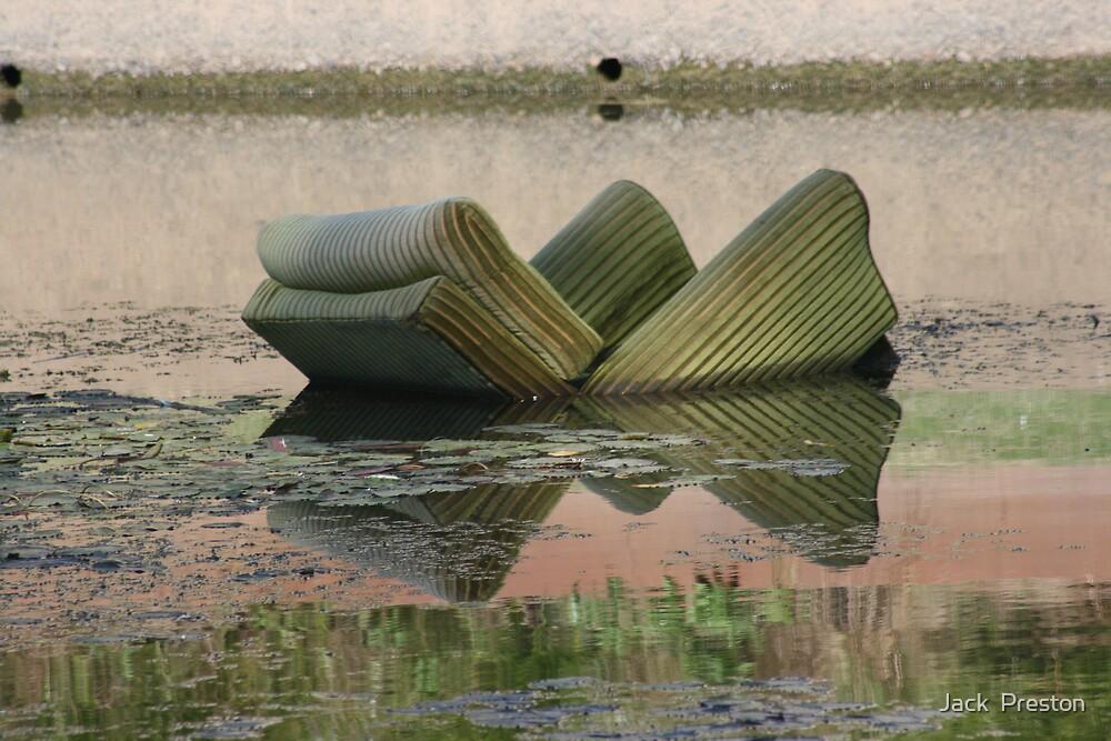 Leisurely swim by Jack  Preston