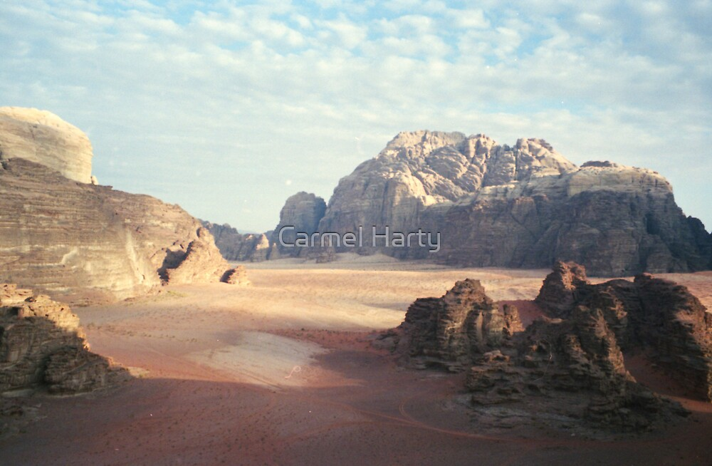 Pink Desert by Carmel Harty