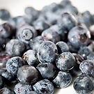 Blueberries isolated on white by yurix