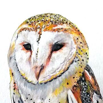 Beautiful Owl - wildlife by Croftsie
