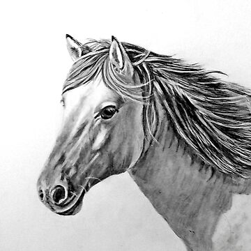 Horse   by Croftsie