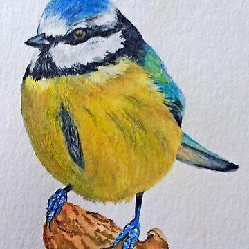 Blue Tit by Croftsie