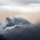 French Alps by Patrice Mestari