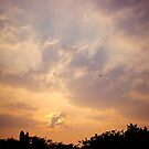 Skyscape by magiceye