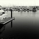 Outer Harbour... by SAPARI