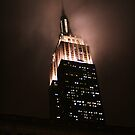 Empire State Building (in a rainy night) by Ferdi S.