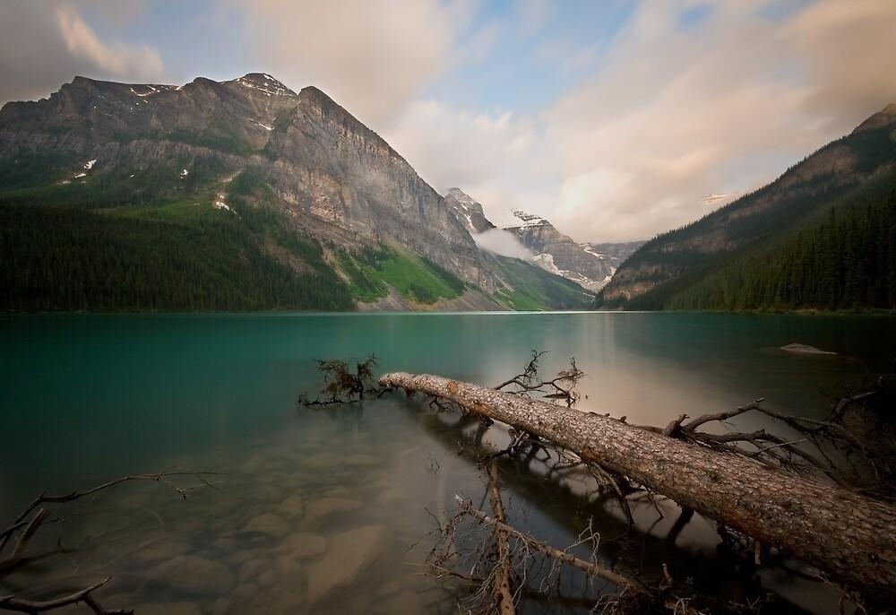 Water Logged by Kevin  Kroeker