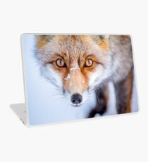 Vinilo para portátil Curioso Fox