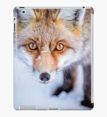 Curious Fox iPad Case/Skin
