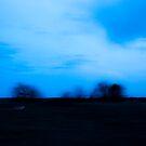 """""""Gone, gone like the evening sun, sun when it sets..."""" ~Brandi Carlile by Jenny Miller"""