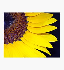 Vivid Yellow Photographic Print