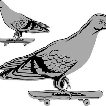 Skateboarding pigeons by amelielegault