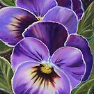 Sweet pansies by Renee Lavoie