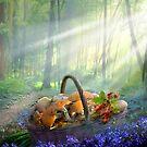 Nature's Harvest by Igor Zenin
