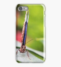 blue wings iPhone Case/Skin