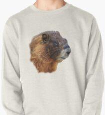 Marmot Portrait Pullover