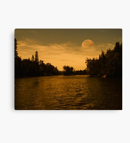 Pale Moon Rising Canvas Print