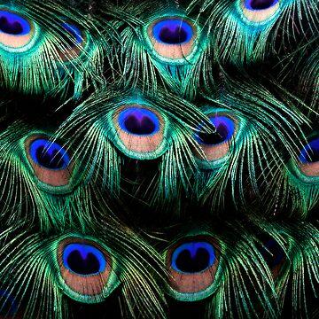 Glowing Eyes by bobbymcleod
