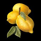Lemons in oil by MadameCat-Art