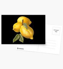 Lemons in oil Postcards