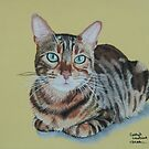 Kitty the Bengal cat by cathyscreations