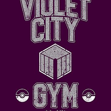 Violet City Gym by huckblade