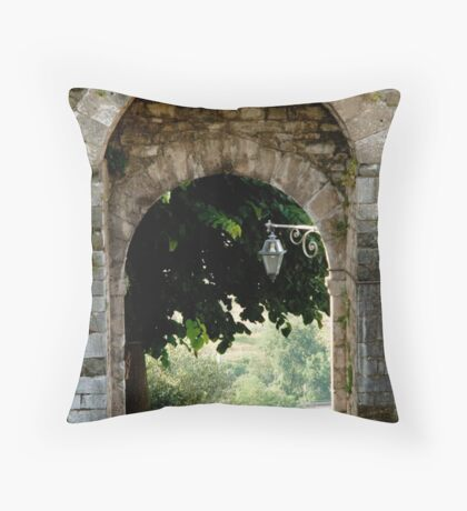 Entry or exit? Throw Pillow