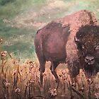 American Buffalo by mjones08