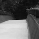 Over the Bridge by Heather Rampino