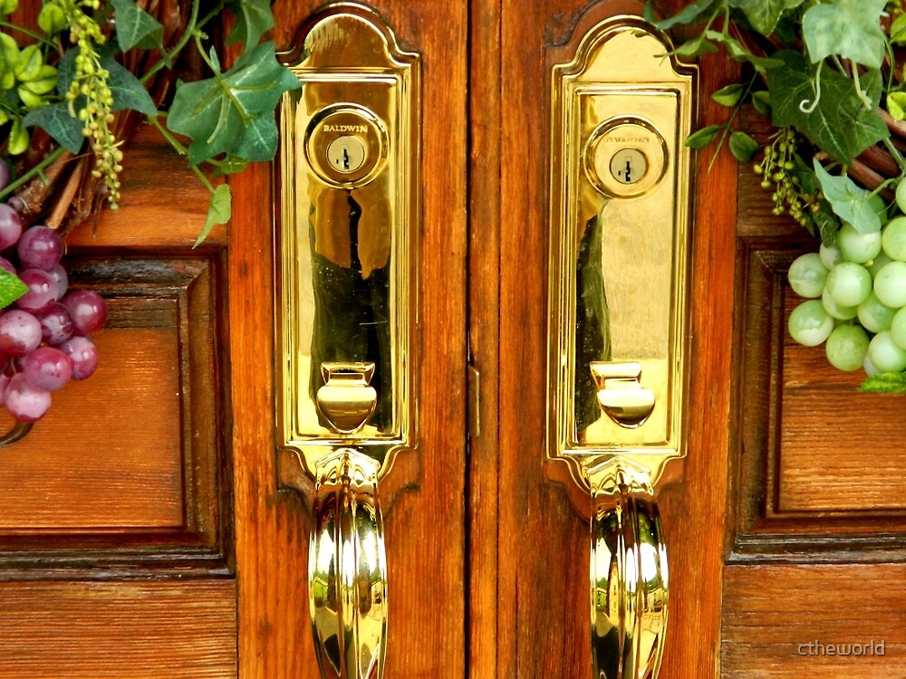 DOOR HANDLES by ctheworld