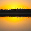 Dawn Watcher by GerryMac