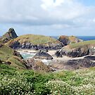 kynance cove by linsads