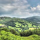 Welsh View by SimplyScene