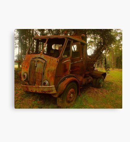 Rusty Trusty Canvas Print