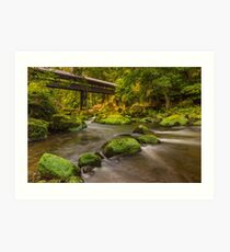 Irrel Waterfalls  Art Print