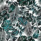 Tropical Garden by Burcu Korkmazyurek