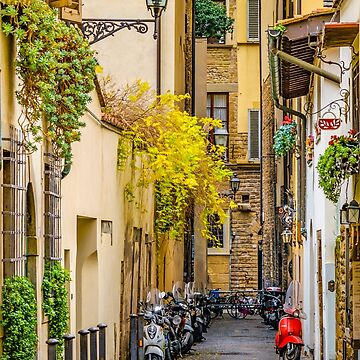 Street of Historic Center of Florence  by DFLCreative