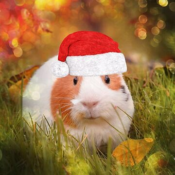 Christmas Guinea pig by Jamcolors