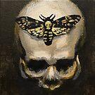 Skull with Death's Head Hawkmoth by niksebastian